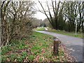 TQ5805 : View north along the Cuckoo Trail by Dave Spicer