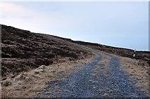 NR6007 : Track to the transmitter on Torr Mor by Steven Brown