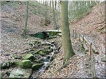 SE0721 : Footbridge across Crawstone Clough by Humphrey Bolton
