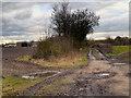 SJ4785 : Hough Green, Ash Lane by David Dixon