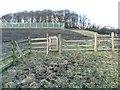 SE0721 : Gate on Elland Footpath 51 by Humphrey Bolton