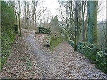 SE0721 : Path junction, Cat Lane by Humphrey Bolton