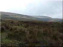 SD6715 : Moorland grazing near Belmont by JThomas