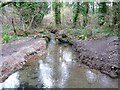 SW6032 : Stream, Godolphin Estate by Humphrey Bolton