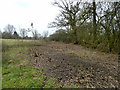 TQ2294 : Scrub clearance, Totteridge Fields nature reserve by Robin Webster