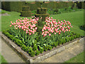 SK4851 : Tulips at Felley Priory Gardens by Trevor Rickard