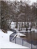 SO9194 : Snowy Park by Gordon Griffiths