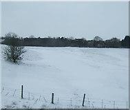 SD6211 : Farmland near Blackrod by JThomas