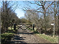 NY1632 : The bridleway to Cockermouth by David Purchase