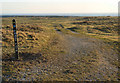 SS7979 : The Wales Coast Path by Sker Point by eswales