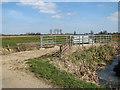 TM4591 : Cattle pen by the River Waveney, Worlingham by Evelyn Simak