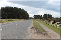 NS2006 : Road to Turnberry by Billy McCrorie