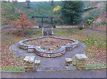 NT9953 : The Old Lily Pond, Berwick by Barbara Carr