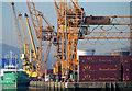 J1318 : Container cranes, Warrenpoint harbour by Albert Bridge