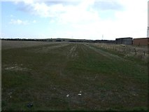 TA1914 : Farmland south of Kings Road by JThomas