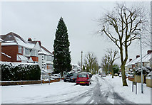 SO9096 : Sutherland Road on Goldthorn Hill, Wolverhampton by Roger  Kidd