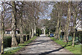 SE7872 : Tree-lined drive to the cemetery chapels by Pauline E