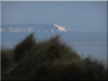 SZ1790 : Hengistbury Head: clifftop tufts of grass by Chris Downer