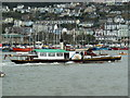 SX8851 : Paddle steamer on the Dart by Chris Allen