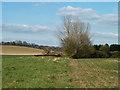 TQ4791 : A harrow between fields by Robin Webster