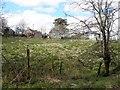 H5267 : Deserted farmhouse, Laragh by Kenneth  Allen