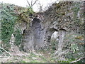 ST3697 : Part of Llangibby Castle ruins by Jeremy Bolwell