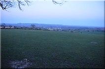 SS9907 : Mid Devon : Grassy Field by Lewis Clarke