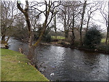 SS8983 : Ogmore River upstream from Riverside, Aberkenfig by Jaggery