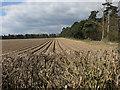 TL8787 : Furrowed field by Croxton Road by Hugh Venables