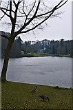 ST7733 : Garden Lake by Ian Capper