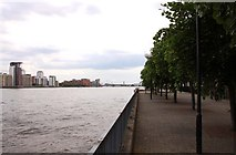 TQ3680 : Tree lined Lawrence Wharf by Steve Daniels