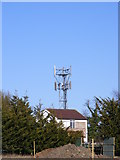 TM4069 : Telecommunications Mast at Darsham Services by Adrian Cable