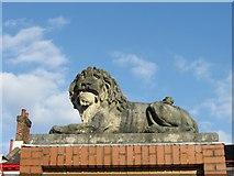 SU4512 : Bitterne Lion, Bitterne by Alex McGregor