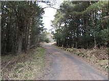J3630 : The access road to the Drinnahilly Transmitter by Eric Jones