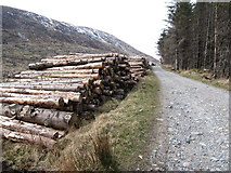 J3629 : Log piles in Donard Forest by Eric Jones