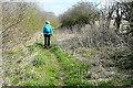SP5600 : Towards New Farm by Graham Horn