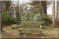 NX1045 : Seating next to Path by Billy McCrorie