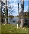 SU6285 : Trunk Ditch, Ipsden by Des Blenkinsopp