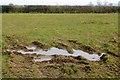 SK0436 : Muddy puddle beside Fole Lane by David Lally