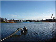 NT6578 : Coastal East Lothian : Pump On Seafield Pond, Belhaven by Richard West