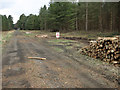 TL8488 : Forestry operations on Park Heath by Hugh Venables