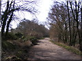 TM5193 : Queens Highway Track & Angles Way Path by Adrian Cable