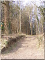 TG1307 : Open Access Path off Landlow Lane by Adrian Cable