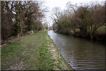 SK7091 : The Chesterfield Canal by Graham Hogg