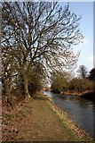 SK7191 : The Chesterfield Canal by Graham Hogg
