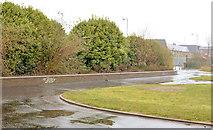 J3674 : The Connswater Greenway, Belfast  (D3-1) by Albert Bridge