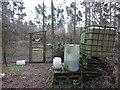 TL7793 : Pheasant rearing, Cranwich Heath by Hugh Venables