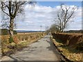 NS4383 : Road to Croftamie by Lairich Rig