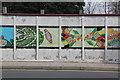 SJ3693 : Colourful hoardings by Alan Murray-Rust