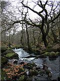 SK2579 : Burbage Brook by Stephen Burton